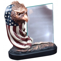 Draped Flag<BR> Eagle Trophy w/ Glass<BR> 7.5 Inches