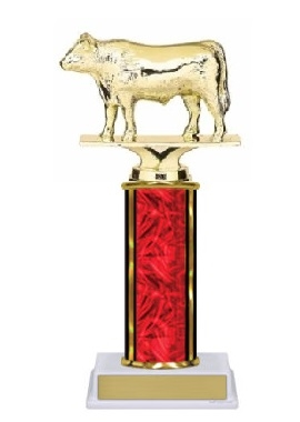 Single Column<BR> Angus Steer Trophy<BR> 10-12 Inches<BR> 10 Colors